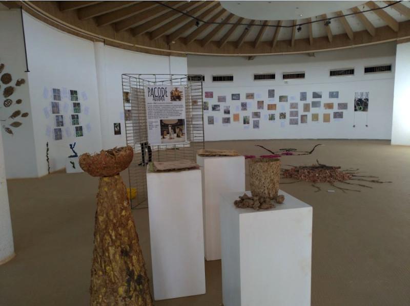 Photographie de l'exposition Land Art, avec des travaux d'élèves du lycée français Saint-Exupéry de Ouagadougou
