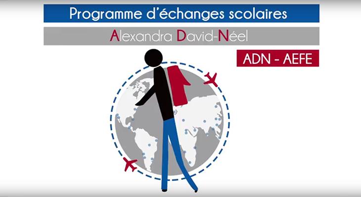 Visuel sur le programmes d'échanges scolaires ADN-AEFE
