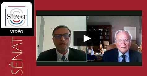 Capture d'écran de l'audition du directeur de l'AEFE devant la commision du Sénat (7 mai 2020)