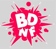 Visuel des ressources BD de la BNF