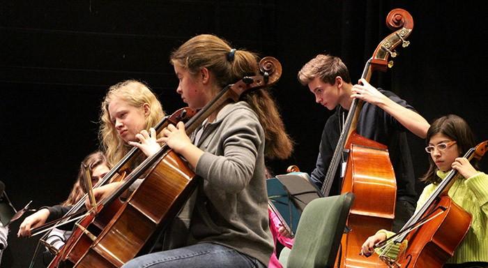 Contrebasse et violoncelles