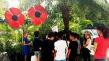 Commémoration du 11 novembre : coquelicots symboliques à La Havane