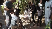 40 ans du lycée français Montaigne au Tchad : capsule temporelle de 2009 déterrée